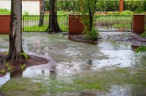 Exterior yard and drainage systems